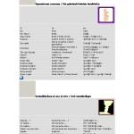 Pequeña guía temática de frases básicas alemán-español