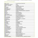 Glosario alemán-español: «Estudiar en Alemania»